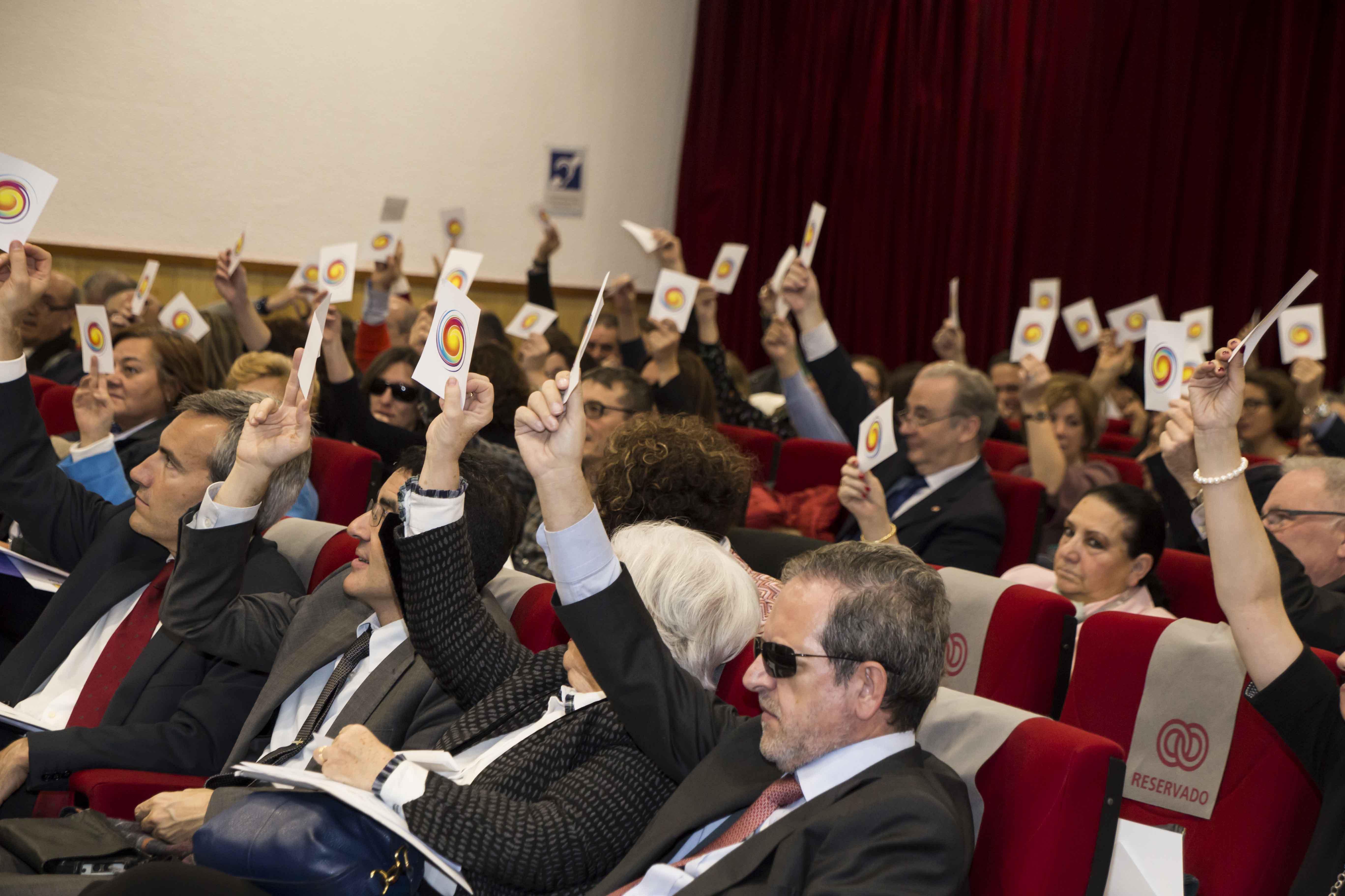 Votación en la Asamblea General de la Plataforma del Tercer Sector